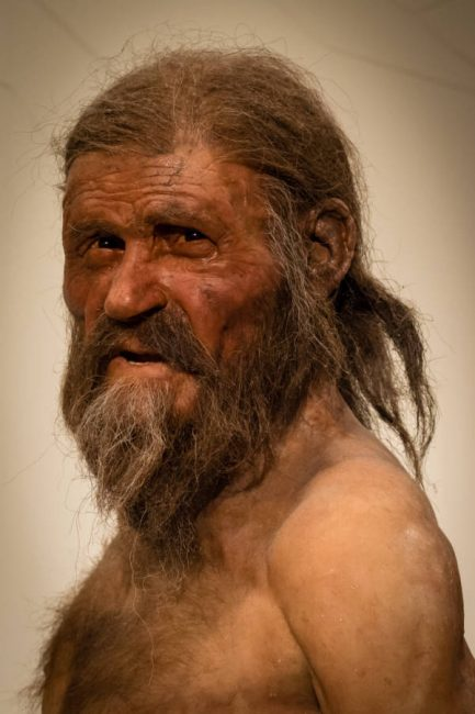 Reconstructed image of the Ötzi the Iceman